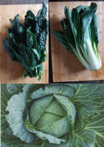 Authentic ribollita soup - kale, chard, savoy