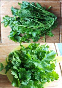 Orecchiette with broccoli rabe - broccoli rabe cleaning